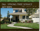 Lawn Moving Service Tampa